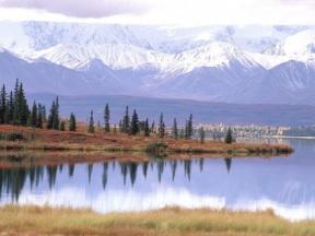 Tundra - Cliparts Zone